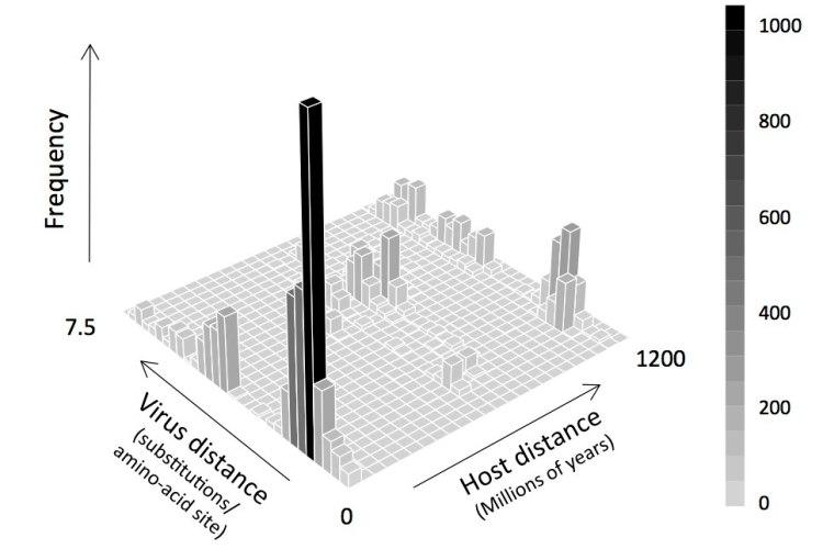 Figure 3D web